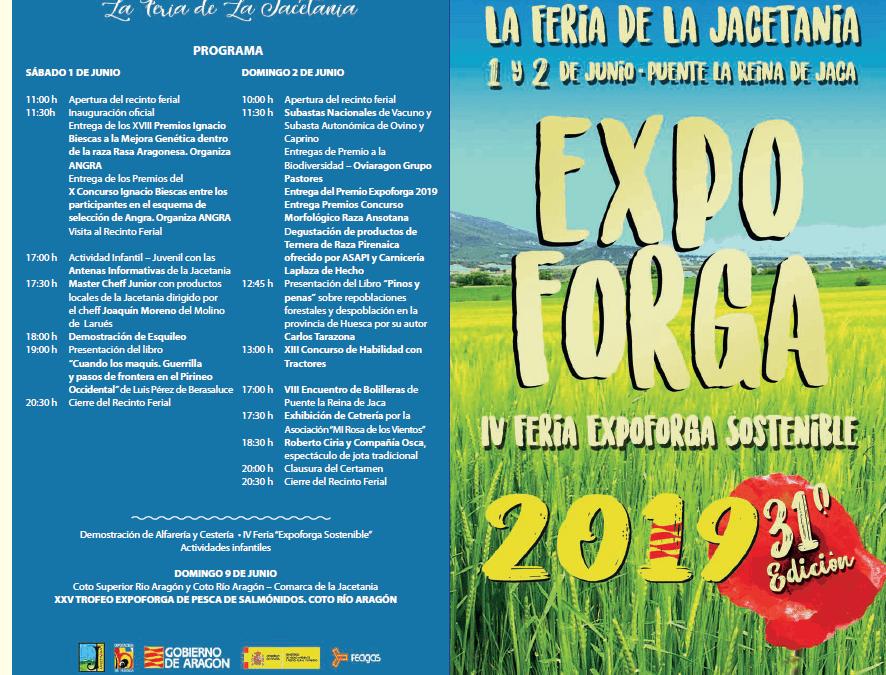 Programa Expoforga 2019